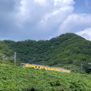 幸せの黄色い電車♪