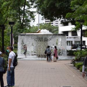 久しぶりに香港公園を散策してきた話