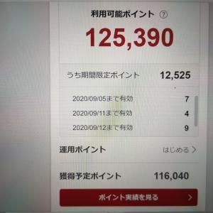 楽天スーパーポイントの獲得予定ポイントが11万円分を突破!果たして使い切れるのか・・・??