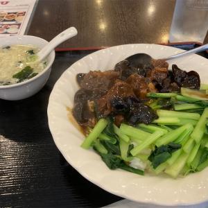 牛肉醤油煮込み飯