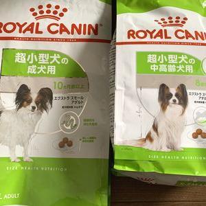 ドッグフードをロイヤルカナン「成犬用」から8+「中高齢犬用」へ!その違いは?