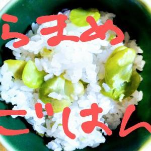 今日はそらまめご飯。初夏ですな~(*^-^*)