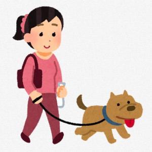 2020年の人気の犬種ランキングご存知ですか~