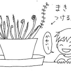植物が好きなの、、か?