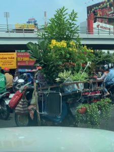 ベトナム入国規制とベトナムミクロ経済の行方