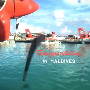 【モルディブの移動手段】モルディブで利用する交通機関3つ