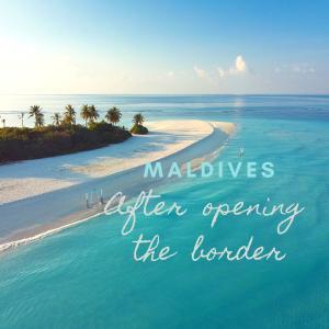 【ウィズコロナのモルディブ】国境オープン10日目、観光客は来ているのか?