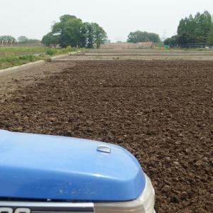 GW、稲作の準備始めました(^^♪