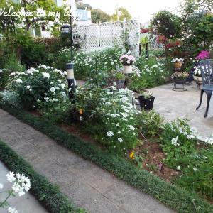 ☆ 花 いっぱいの庭・~*・゚♡