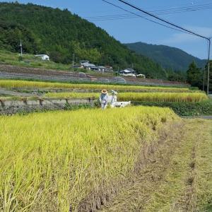 日本の農業は「世界を震撼させるレベル」「農業は強い」と中国が称賛