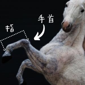 【源頼朝】もびっくり!献上された「9本足の馬」の正体とは?