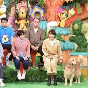 《セクハラ告発》志村どうぶつ園プロデューサーが「わいせつ写真」送信! 日テレは「公表しておりません」