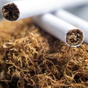 """10月の「たばこ増税」が、""""非喫煙者""""の懐事情にも影響するかもしれないワケ たばこだけで賄うのはもう厳しい"""