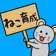 【新作アプリ】ネコのボンボンボンの配信情報やゲーム内容の考察♪