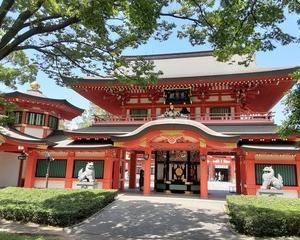 最強パワースポット巡り 千葉神社に行ってきました。