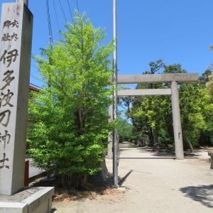 尾張式内社を訪ねて 55 伊多波刀神社