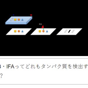 実験手法の使い分け【ELISA vs. WB vs. IFA】