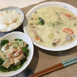 晩ご飯の献立(32)クリームシチューとアボカドとサーモンのサラダ