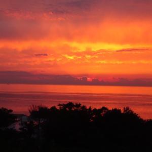和歌山旅行1日目は白浜へ。