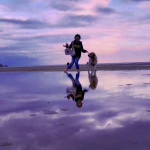 父母ヶ浜海岸はフォトジェニックなビーチ !
