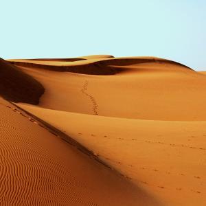 敦煌郊外の砂漠で死にかけました!