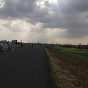 今日は一日まったり~午後から天気が良くなってきました~