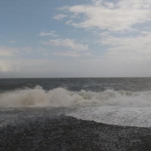 駿河湾に寄りました