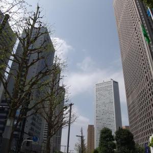 こんにちは、新宿さん~♪♪(今日からは新宿でおしごとです😊)