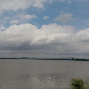 今回は小さな旅…渡良瀬遊水地へ行ってきました
