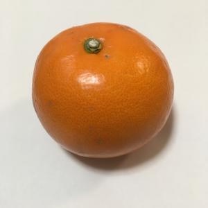 【スーパー】噛める オレンジジュース