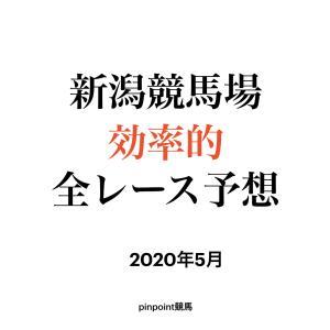 【中央競馬】【新潟競馬場 効率的全レース予想】2020年5月23日(土)