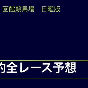 【中央競馬】【函館競馬場 効率的全レース予想】2020年7月5日(日)