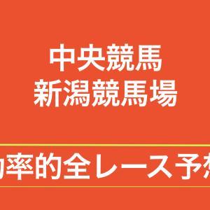 【中央競馬】【新潟競馬場 効率的全レース予想】2020年8月2日(日)