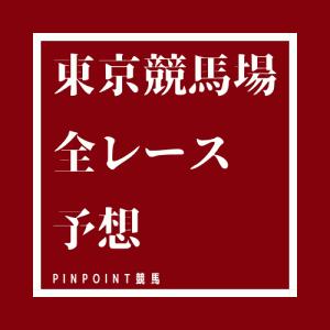 【東京競馬場】中央競馬、全レース無料予想2020年10月24日(土)