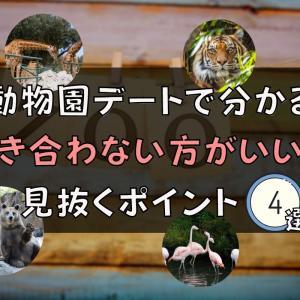 【おすすめ】動物園デートで分かる『付き合わない方がいい人』を見抜くポイント4選