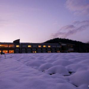 日が暮れてきたからラベンダー色の世界を歩いてみようか。フラノ寶亭留、雪のラベンダー畑