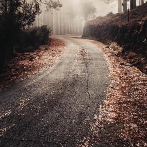 三重の山道恐ろしすぎ!老ヶ野古田青山線、県道755号もとい、険道に迷いこみ肝が冷えて泣く