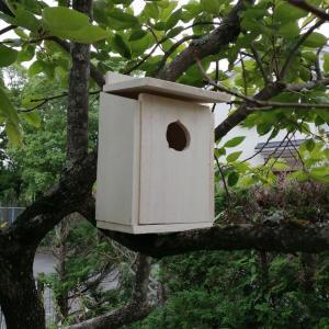 巣箱を作る。