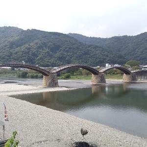 名勝 錦帯橋