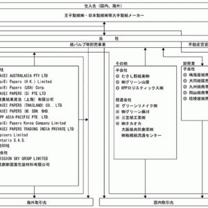 国際紙パルプ商事(9274) 持株会社体制へ再編