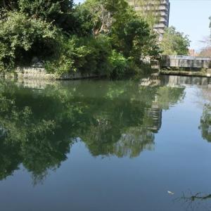 柳川は世間から切り離された町のようだった・・