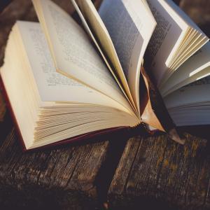 【史上最強のCEO】を読んでみました。ジェームス・スキナー