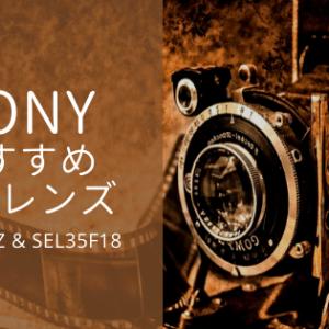 【海外旅行におすすめ】ソニーの軽量レンズの紹介 (SEL1670Z / SEL35F18)