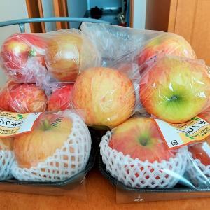 りんごダイエットをトライアルしてみました①