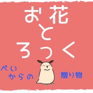 55歩め!お花とフクロウ🌼*・