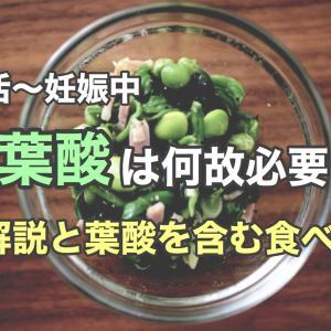 【妊活〜妊娠中】葉酸はなぜ必要?葉酸を摂取する方法まとめ