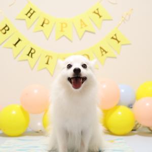 3歳の誕生日をYouTubeライブでお祝いしました🎂