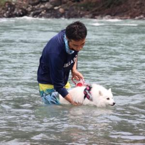 【東京から2時間以内】愛犬と水遊びができるおすすめスポット9選(川遊びやプールなど)