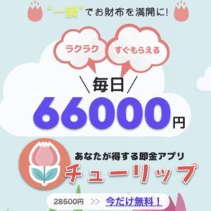 チューリップは毎日66000円稼げる?詐欺?評判や評価!