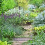 園芸家・絵本作家として自然に寄り添って生きたターシャテューダーの暮らしに思う